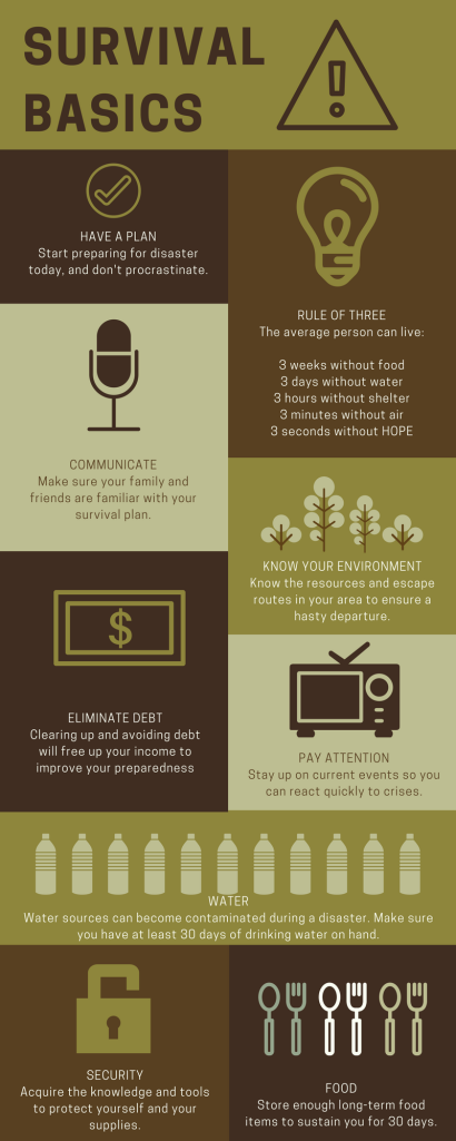 Survival Basics Infographic